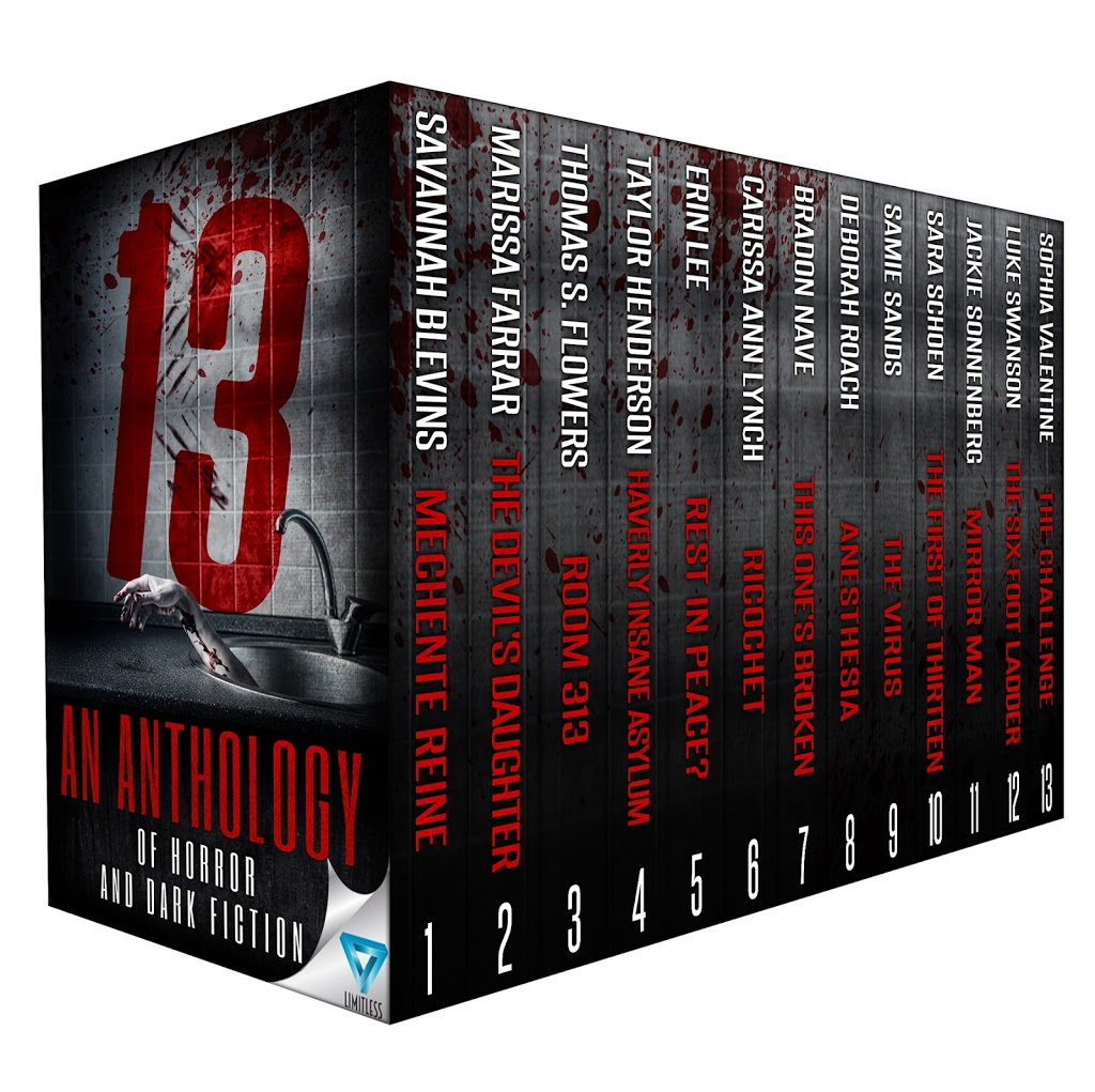 Cover Reveal for the much anticipated Thriller Anthology…13!