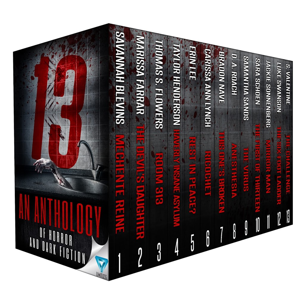 New Release! 13, an Anthology of Dark Fiction and Horror
